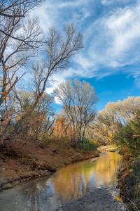 San Pedro River, AZ Reflection #1