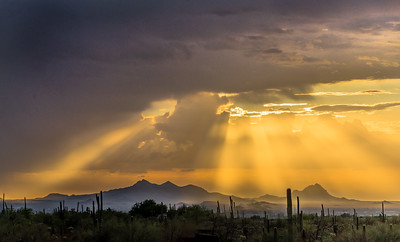Silverbell, Ragged Top, and Sunbeams