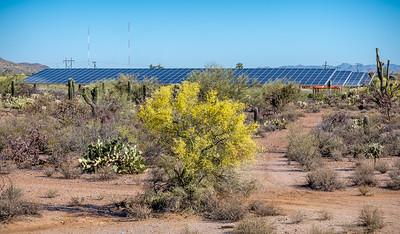 EH - Oyama Elementary School Solar Panels