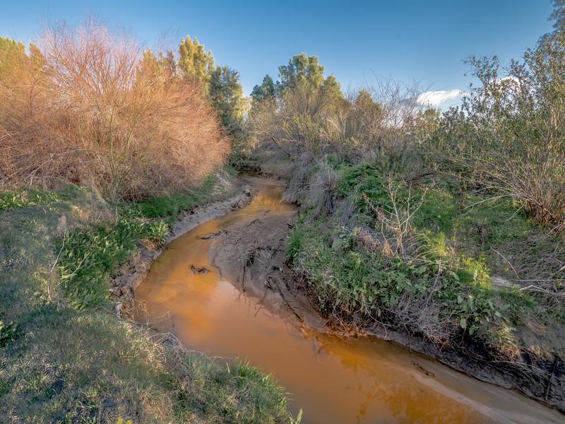 Santa Cruz River #5