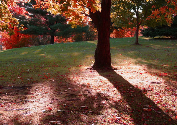 Sullivan County, PA Touch Of Autumn