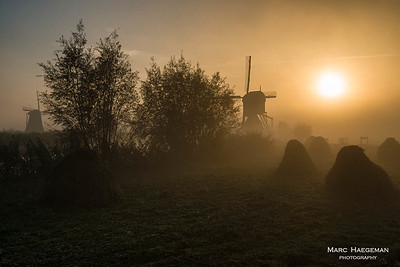 Misty sunrise on the Kinderdijk