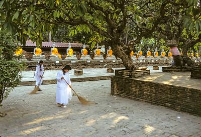Thai Buddhist Nuns