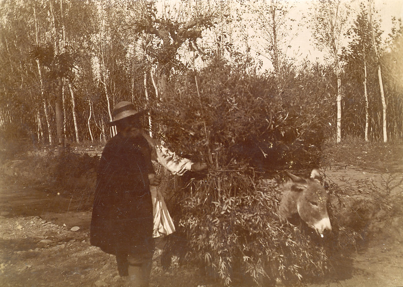 Rural Greece, c. 1920