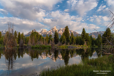 Morning bliss at Schwabacher's Landing