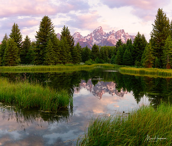 Alpenglow at Schwabacher's Landing