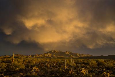 Wasson Peak #11