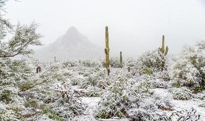 Desert Snow #6