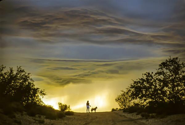 Dog Walking Under a Monsoon Cloud