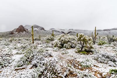 Desert Snow #2