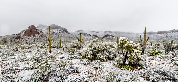 Desert Snow #1