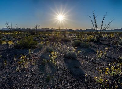 Sunburst, Southern Arizona