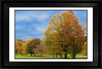 Fall Foliage, Part 1_Framed