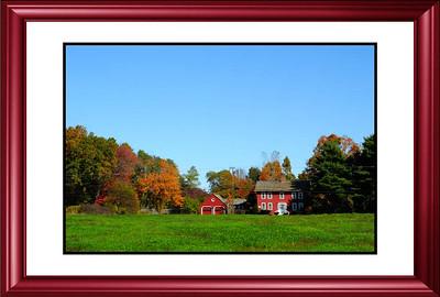 Fall Foliage, Part 2_Framed