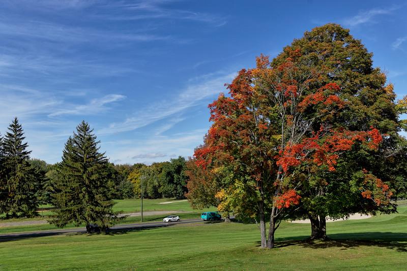 Fall Foliage_Oct. 14, 2014