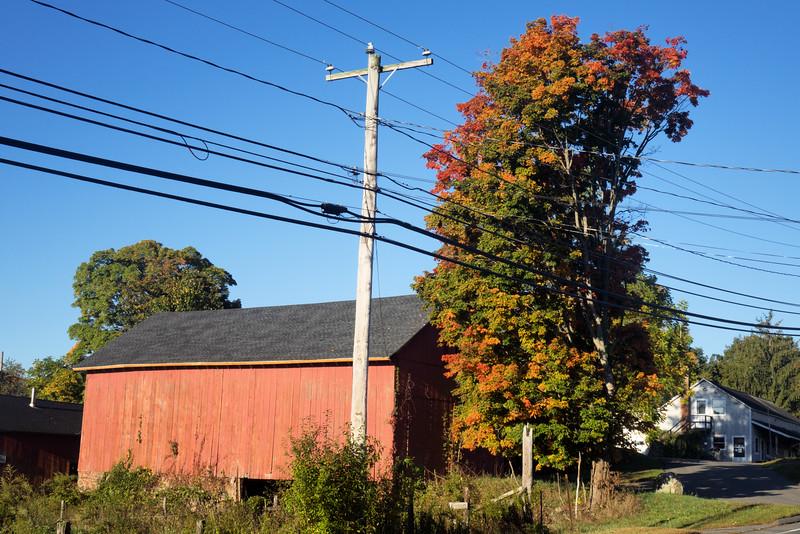 Fall Foliage_Oct. 3, 2014