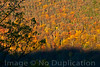 Autumn In Virginia - October 2012<br /> (2x3)