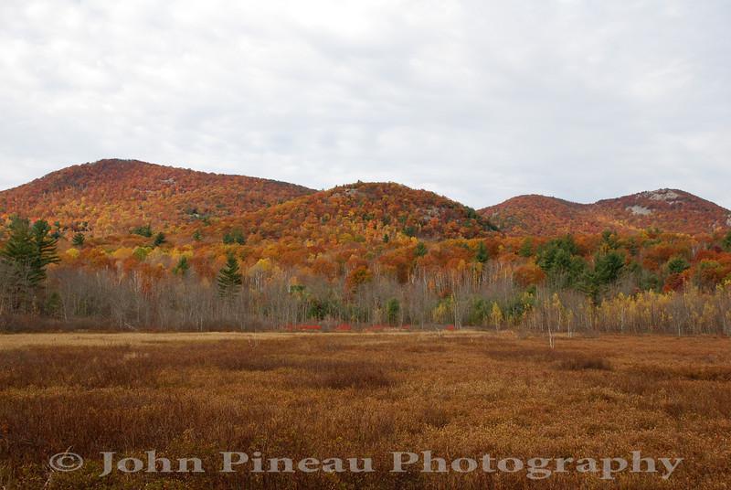 Fall Foliage - Brownfield, Maine<br /> FO_0044-DSC_5853