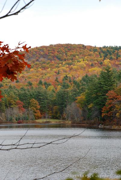 Fall Foliage - Porter, Maine<br /> FO_0043-DSC_5835