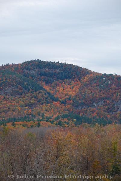 Fall Foliage - North Conway, New Hampshire<br /> FO_0049-DSC_5878