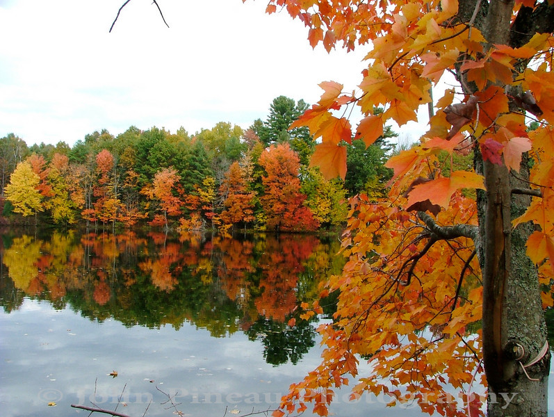 Fall Foliage from Shaw Park - Gorham, Maine<br /> FO_0013-DSCF5210