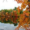 Fall Foliage from Shaw Park - Gorham, Maine<br /> FO_0013-DSCF5210