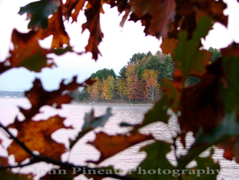 Fall Foliage through the trees on Sebago Lake - Standish, Maine<br /> FO_0022-DSCF5347
