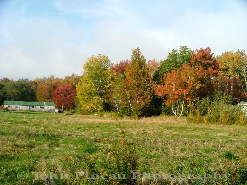 Fall Foliage - Camden, Maine<br /> FO_0008-8_fo