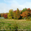 Fall Foliage - Camden, Maine<br /> FO_0008-8_fo