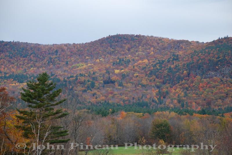 Fall Foliage - North Conway, New Hampshire<br /> FO_0046-DSC_5873