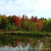 Fall Foliage - Saco, Maine<br /> FO_0002-Pic 062