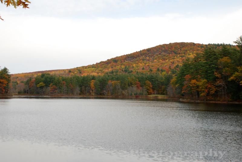 Fall Foliage - Porter, Maine<br /> FO_0042-DSC_5812