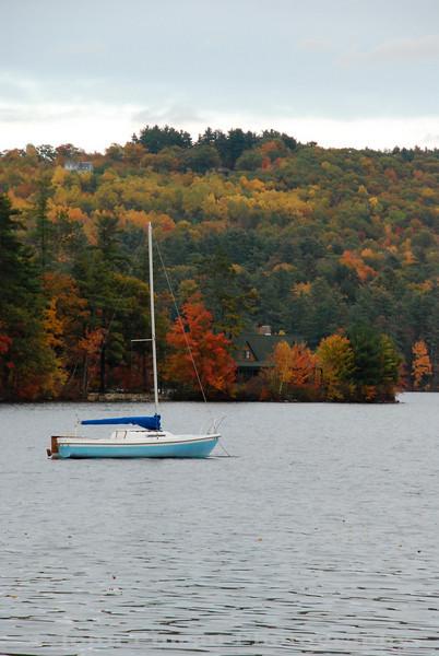 Fall Foliage along Long Lake - Harrison, Maine<br /> FO_0029-DSC_5283