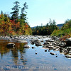 Foliage along the Kankamangus Highway - Conway, New Hampshire<br /> FO_0003-3_fo