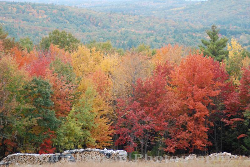 Fall Foliage from Hacker's Hill - Casco, Maine<br /> FO_0035-DSC_5210