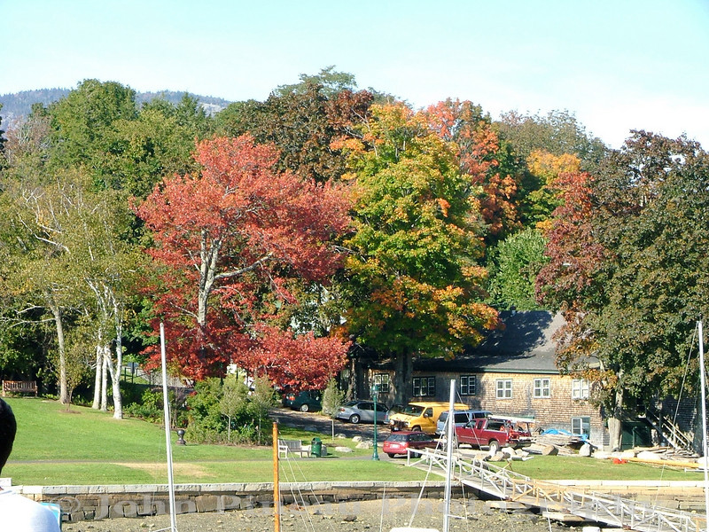 Camden Harbor Foliage - Camden, Maine<br /> FO_0005-5_fo