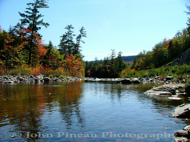 Foliage along the Kankamangus Highway - Conway, New Hampshire<br /> FO_0009-9_fo