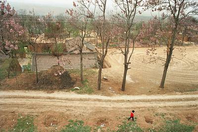 Qianxian, 1995