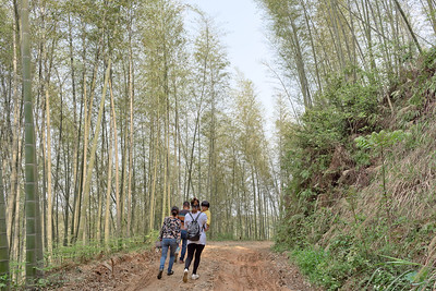 Xiniushan, Anhua 犀牛山