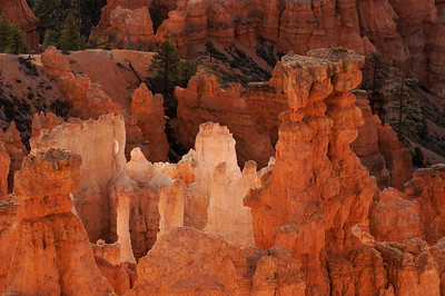 Hoodoos, Sunset Point, Bryce National Park    2010