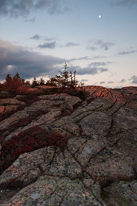 Cadillac Mountain, Acadia National Park    2010