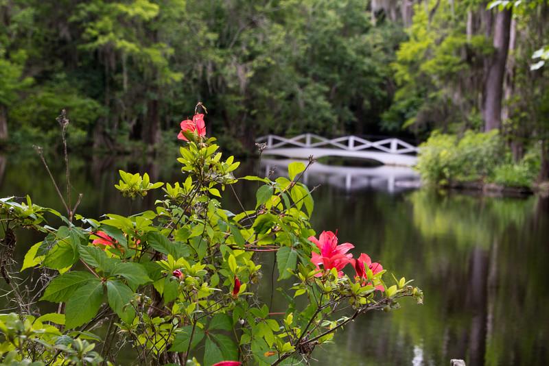 2260 Flowers and bridge
