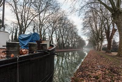 janvier 2015, canal du Rhône au Rhin, Eschau, Bas-Rhin