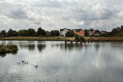 juillet 2014, Canal de décharge de l'Ill, Kraft, Bas-Rhin