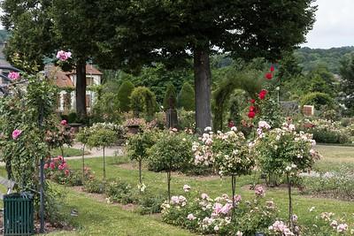juillet 2017, La roseraie de Saverne, Bas-Rhin