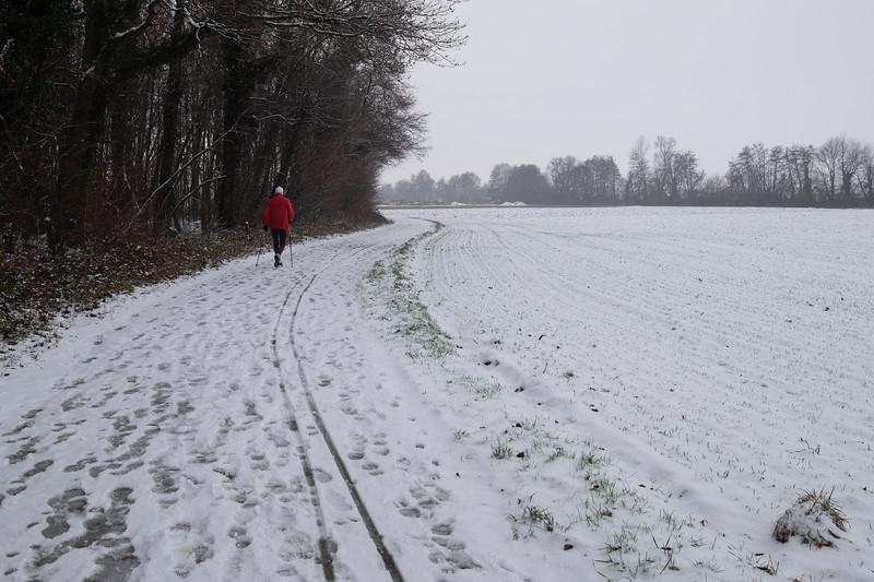 Décembre 2018, Fegersheim, Bas-Rhin