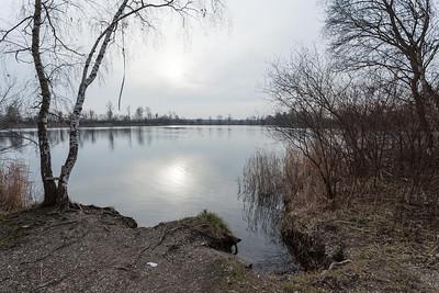 février 2014, étang  à Altenheim, Bade-Wurtenberg
