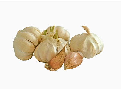 a group of fresh, white, garlic, cloves and bulbs