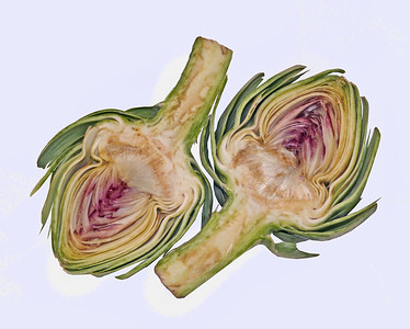 an artichoke sliced laterally to show the inside,