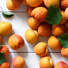 Whole orange apricots with red blush and leaves. Background from above.